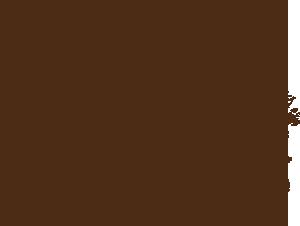 dąb - ilustracja Boros Oak Barrels
